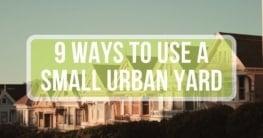 ways to use an urban yard