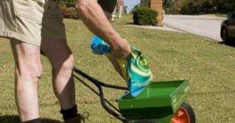 small yard fertilizer spreaders
