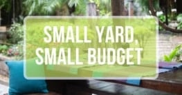 small yard small budget