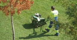 best small lawn aerators