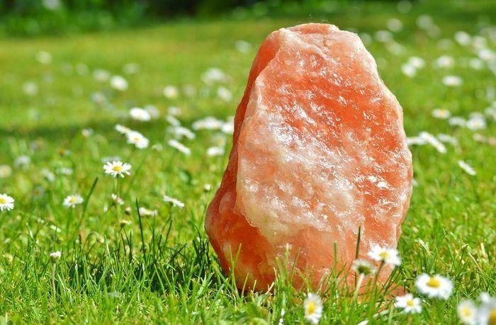 rock salt in grass