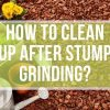 How to Clean Up After Stump Grinding?