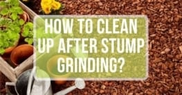 how to clean up after stump grindings