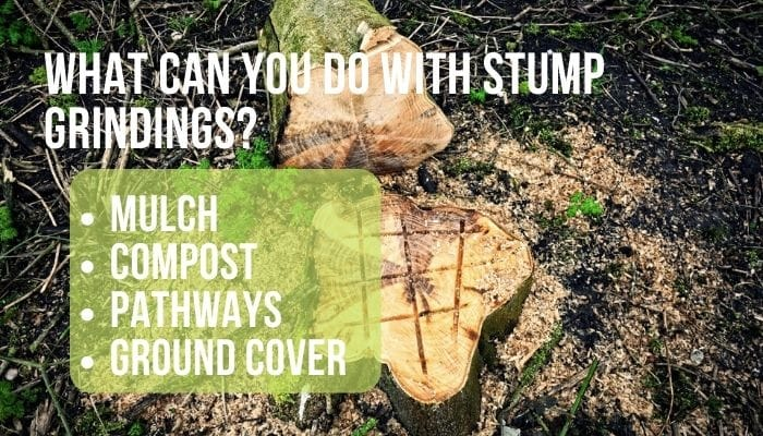 repurpose stump grindings