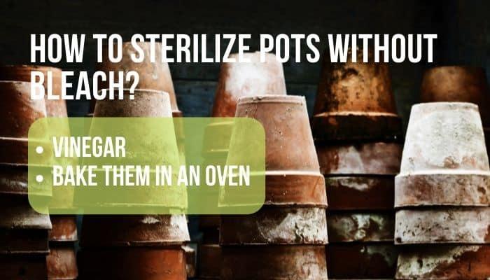 sterilize pots without bleach