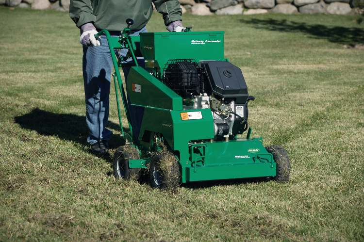 overseeder on lawn