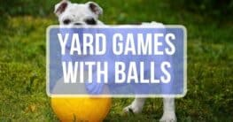 dog with a ball and text yard games with balls